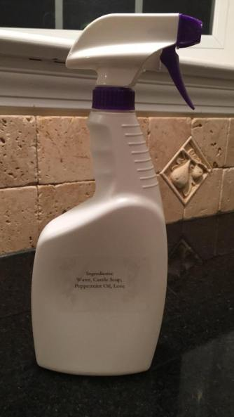 all purpose cleaner back